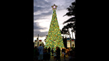Sights & Scenes: SeaWorld's Christmas Celebration - (2/14)