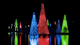 Sights & Scenes: SeaWorld's Christmas Celebration - (13/14)