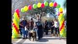 Paws in the Park - SPCA of Central Florida Benefit - (4/25)