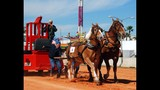 IMAGE GALLERY: 2012 Osceola County Fair - (9/25)