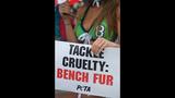 PETA's 'Sexy Mermaid' Protests Fish Cruelty… - (14/25)
