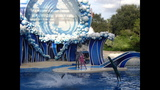 How to enjoy shows at SeaWorld Orlando - (3/7)