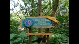 Discovery Island Trails at Disney's Animal Kingdom - (3/9)