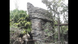 Searching for Hidden Mickeys at Animal Kingdom - (3/7)