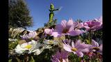 Epcot International Flower & Garden Festival - (2/13)