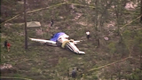Polk County plane crash - (5/6)