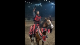 New Show at Medieval Times Dinner & Tournament - (21/25)