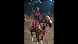 New Show at Medieval Times Dinner & Tournament - (3/25)
