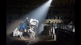 New Show at Medieval Times Dinner & Tournament - (24/25)