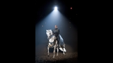 New Show at Medieval Times Dinner & Tournament - (16/25)