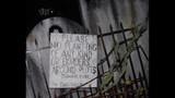 Frights & Scenes: Halloween Horror Nights 22 - (23/25)
