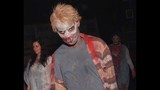 Frights & Scenes: Halloween Horror Nights 22 - (16/25)