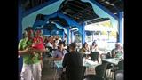 Photos: Dine With Shamu at SeaWorld Orlando - (6/15)