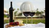 Epcot International Food & Wine Festival - (22/23)