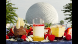 Epcot International Food & Wine Festival - (8/23)