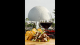 Epcot International Food & Wine Festival - (21/23)