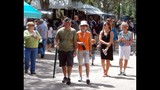 Maitland Rotary Arts Festival - (18/25)