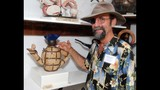 Maitland Rotary Arts Festival - (23/25)