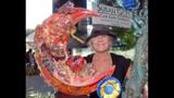 Maitland Rotary Arts Festival - (8/25)