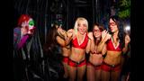 Buccaneers Cheerleaders at Busch Gardens'… - (2/15)
