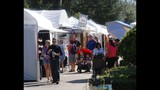 Winter Springs Festival of the Arts - (3/25)
