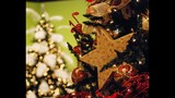 Festival of Trees at Orlando Museum of Art - (8/25)
