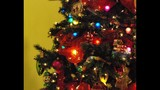 Festival of Trees at Orlando Museum of Art - (24/25)