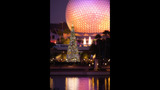 Holidays at Walt Disney World - (3/13)