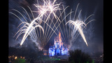 Holidays at Walt Disney World - (2/13)