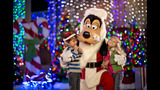 Holidays at Walt Disney World - (12/13)