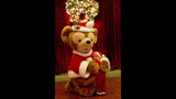 Holidays at Walt Disney World - (1/13)