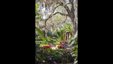 Christmas at Bok Tower Gardens & Pinewood Home Tour - (4/25)
