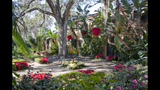 Christmas at Bok Tower Gardens & Pinewood Home Tour - (18/25)