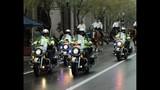 2012 Orlando Citrus Parade - (16/25)