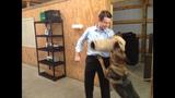 Photos: Chris Heath shows K-9 training technique - (2/6)