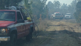 Ormond Beach brush fire - (16/17)