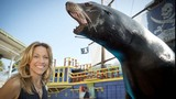 Photos: Sheryl Crow and family visit SeaWorld - (4/5)