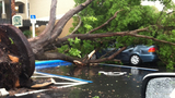 Photos: Storm causes damage to central Fla. - (19/25)