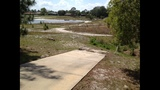 Photos: Deltona lake drying up - (3/4)