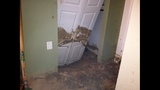Photos: Mudslide damages Clermont home - (12/13)
