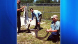 Photos: Python found at water treatment plant - (4/5)