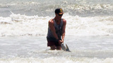 Photos: Lifeguard helps shark in Brevard - (3/3)
