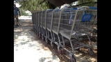 Photos: Walmart shopping carts in Silver Springs - (3/14)