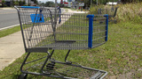 Photos: Walmart shopping carts in Silver Springs - (14/14)