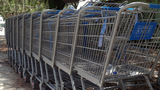 Photos: Walmart shopping carts in Silver Springs - (5/14)
