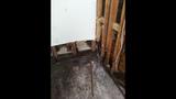 Photos: Altamonte Springs apartment flooded - (5/15)