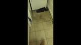 Photos: Altamonte Springs apartment flooded - (8/15)