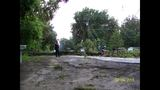 Photos: Downed Trees in Central Florida - (10/21)