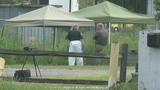 Photos: Police investigate after body found - (6/9)