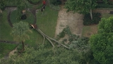 Photos: Storm damage in East Orange County - (1/8)
